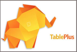 TablePlus 3.12.19 Crack With License Key Free Download 2021